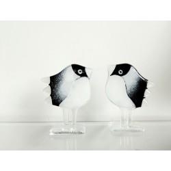 2 ptaszki/szkło